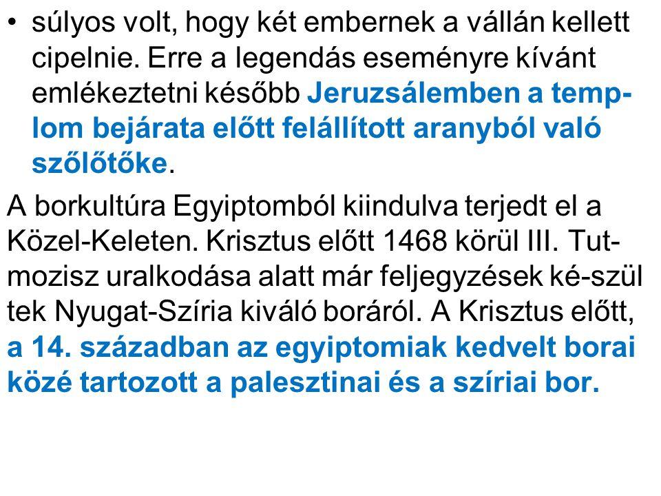 •súlyos volt, hogy két embernek a vállán kellett cipelnie. Erre a legendás eseményre kívánt emlékeztetni később Jeruzsálemben a temp- lom bejárata elő