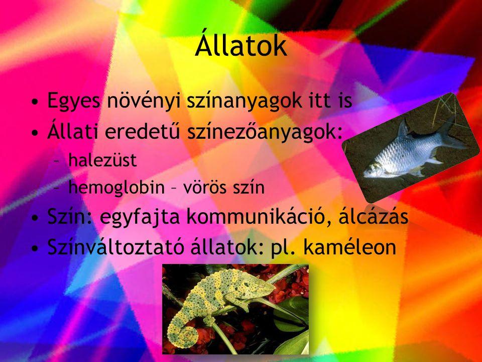 Állatok •Egyes növényi színanyagok itt is •Állati eredetű színezőanyagok: –halezüst –hemoglobin – vörös szín •Szín: egyfajta kommunikáció, álcázás •Sz