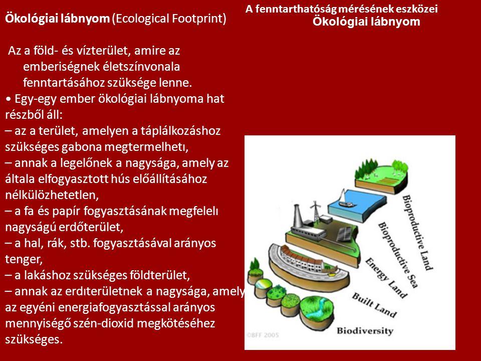 Ökológiai lábnyom (Ecological Footprint) Az a föld- és vízterület, amire az emberiségnek életszínvonala fenntartásához szüksége lenne. • Egy-egy ember