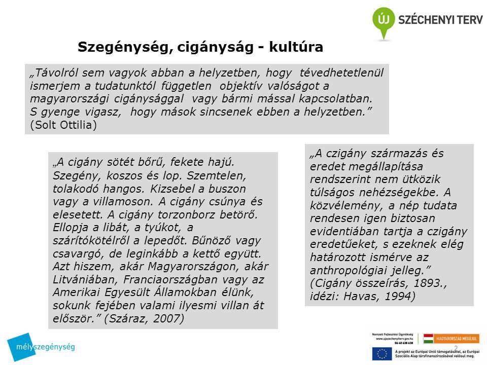 Szegénység, cigányság - kultúra Szempontok a feldolgozáshoz (szövegrészletek az ÁSZ 2008-as jelentéséből) 1.Milyen érvek/ellenérvek hozhatók fel az állítás mellett/ellen.