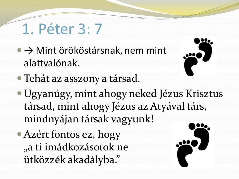 1. Péter 3: 7  → Mint örököstársnak, nem mint alattvalónak.  Tehát az asszony a társad.  Ugyanúgy, mint ahogy neked Jézus Krisztus társad, mint aho