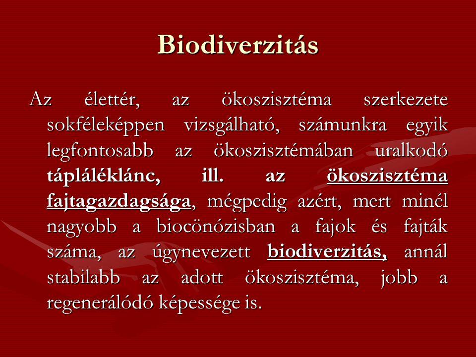 Biodiverzitás Az élettér, az ökoszisztéma szerkezete sokféleképpen vizsgálható, számunkra egyik legfontosabb az ökoszisztémában uralkodó tápláléklánc, ill.