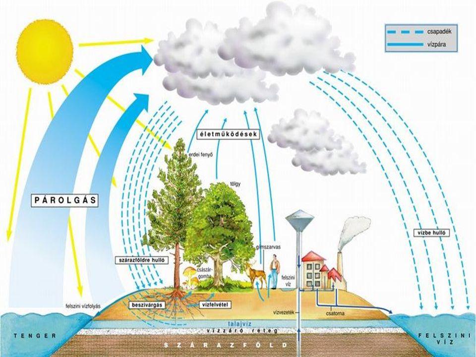 Felszín alatti víz: Fajtái: parti szűrésű-, talajvíz, rétegvíz, a karsztvíz hévízek (30 °C felett) • Talajvíz: az első vízadó képződmények többnyire szabadfelszínű, gyakorta nyomás alatti vizét tekintjük.