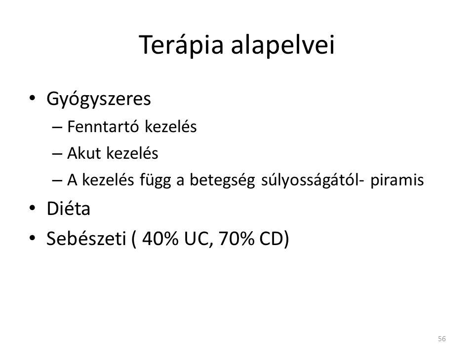 Terápia alapelvei • Gyógyszeres – Fenntartó kezelés – Akut kezelés – A kezelés függ a betegség súlyosságától- piramis • Diéta • Sebészeti ( 40% UC, 70