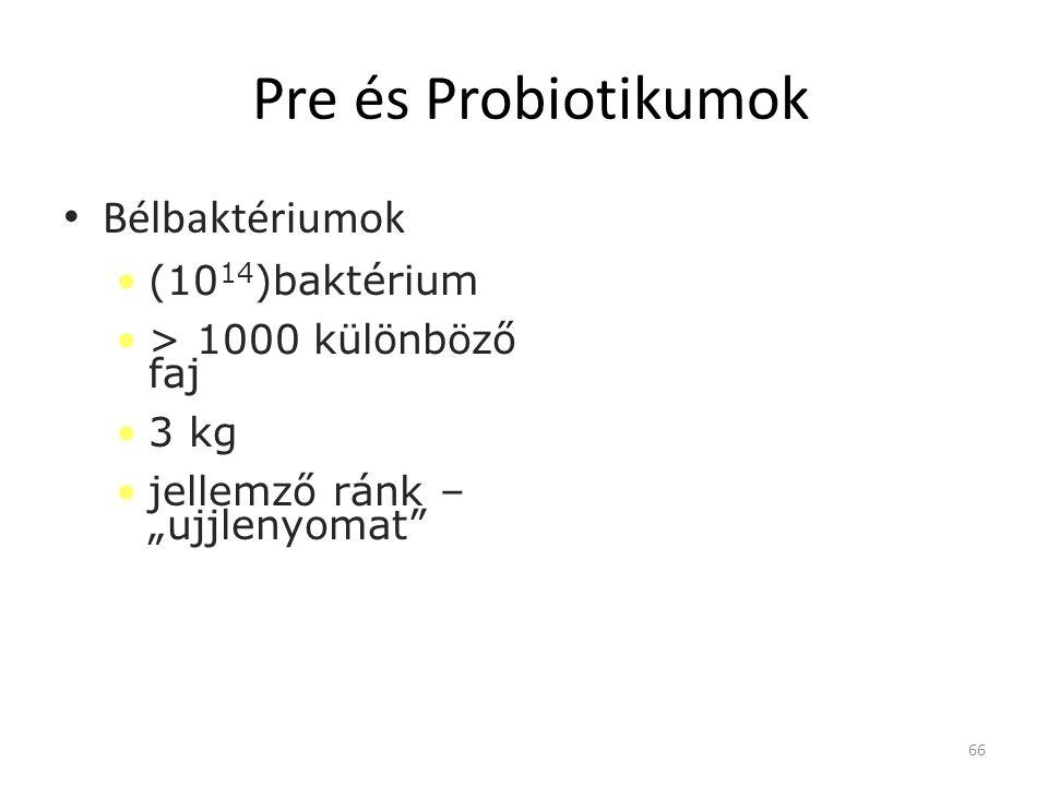 """Pre és Probiotikumok • Bélbaktériumok •(10 14 )baktérium •> 1000 különböző faj •3 kg •jellemző ránk – """"ujjlenyomat"""" 66"""