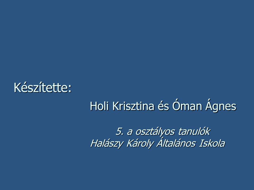 Készítette: Holi Krisztina és Óman Ágnes 5. a osztályos tanulók Halászy Károly Általános Iskola