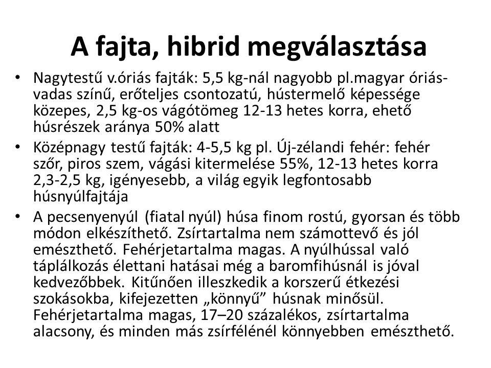 A fajta, hibrid megválasztása • Nagytestű v.óriás fajták: 5,5 kg-nál nagyobb pl.magyar óriás- vadas színű, erőteljes csontozatú, hústermelő képessége