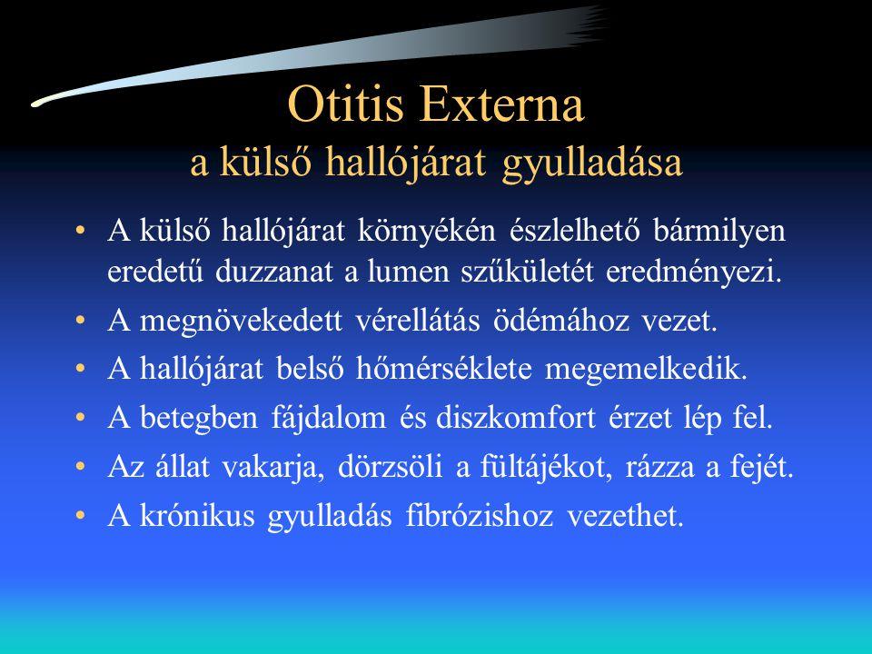 Otitis Externa a külső hallójárat gyulladása •A külső hallójárat környékén észlelhető bármilyen eredetű duzzanat a lumen szűkületét eredményezi. •A me