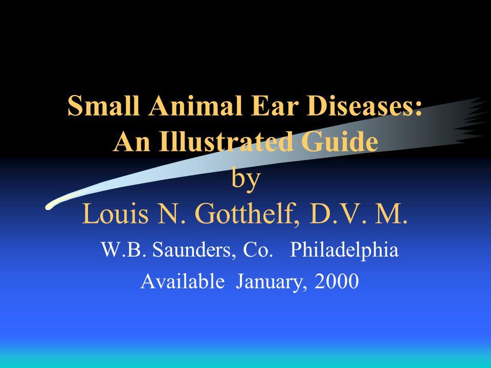 """Bevezető •A kutyák kb 20%-a szenved fülbetegségben (nedves, meleg környezetben az előfordulás az 50%-ot is elérheti) •A macskák kb 7%-a szenved fülbetegségben •Nem mindig """"fül fertőzés áll a háttérben •A fülbetegségek a tulajdonosokat az állatorvosokhoz irányítják •A diagnózis és kezelés sokszor nem egyszerű a laikusok számára (pl."""