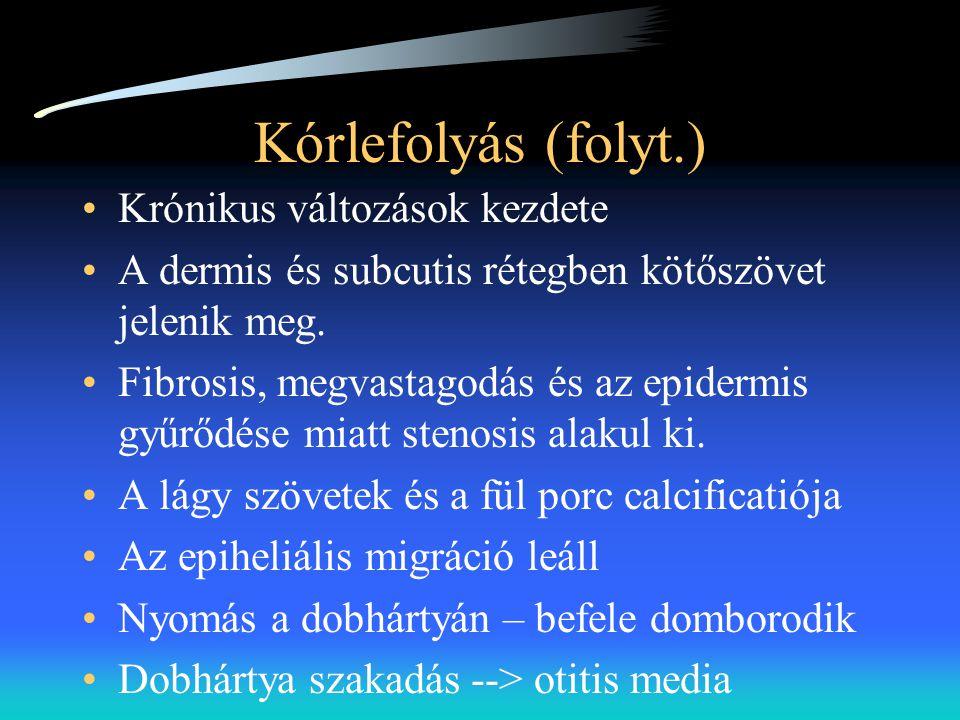 Kórlefolyás (folyt.) •Krónikus változások kezdete •A dermis és subcutis rétegben kötőszövet jelenik meg. •Fibrosis, megvastagodás és az epidermis gyűr