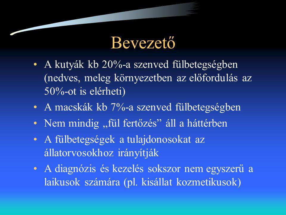 Kórlefolyás •Akut gyulladásos reakció •Erythema, ödéma, fájdalom (idegek nyomása) •Hyperkeratosis •A bőr lymphocytákkal, hízósejtekkel, és neutrophilokkal infiltrálódik •Növekvő faggyúmirigy szekréció és az apokrin (cerumen) mirigyek számának növekedése.