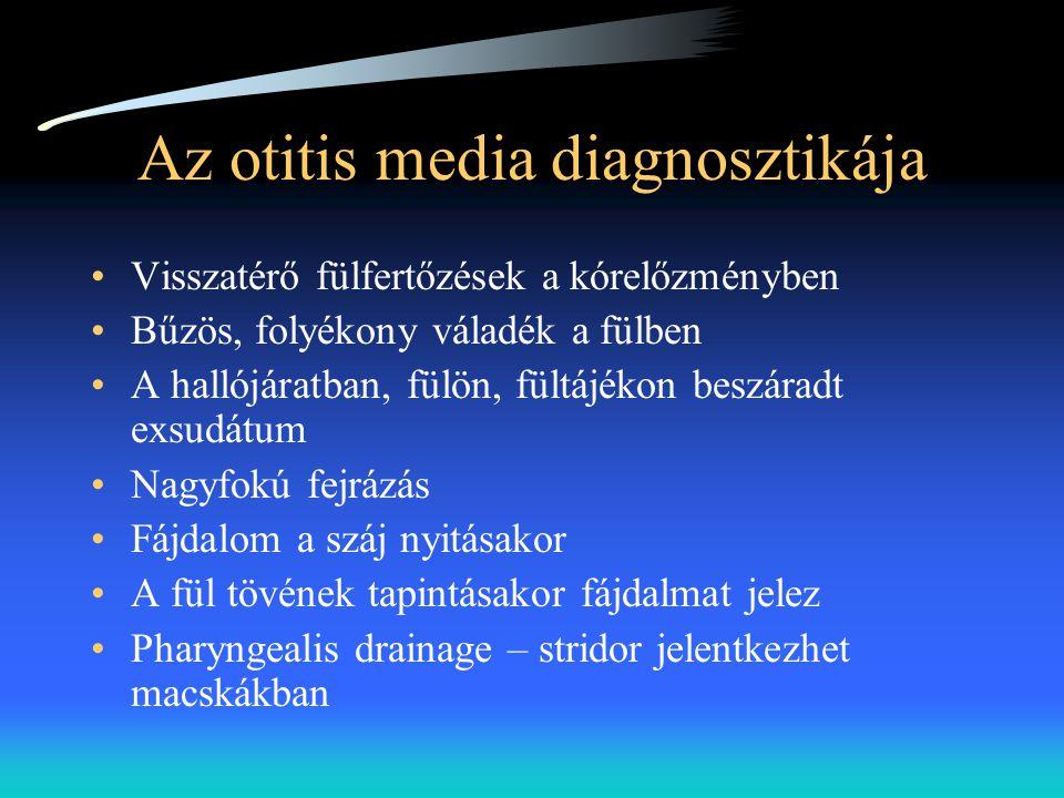 Az otitis media diagnosztikája •Visszatérő fülfertőzések a kórelőzményben •Bűzös, folyékony váladék a fülben •A hallójáratban, fülön, fültájékon beszá