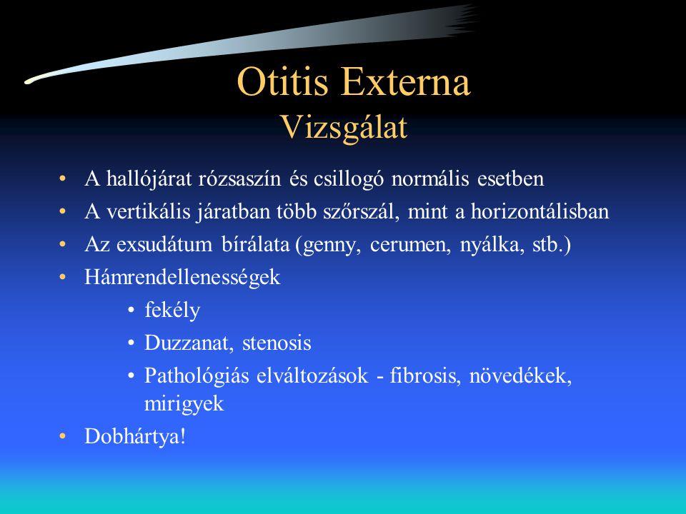 Otitis Externa Vizsgálat •A hallójárat rózsaszín és csillogó normális esetben •A vertikális járatban több szőrszál, mint a horizontálisban •Az exsudát