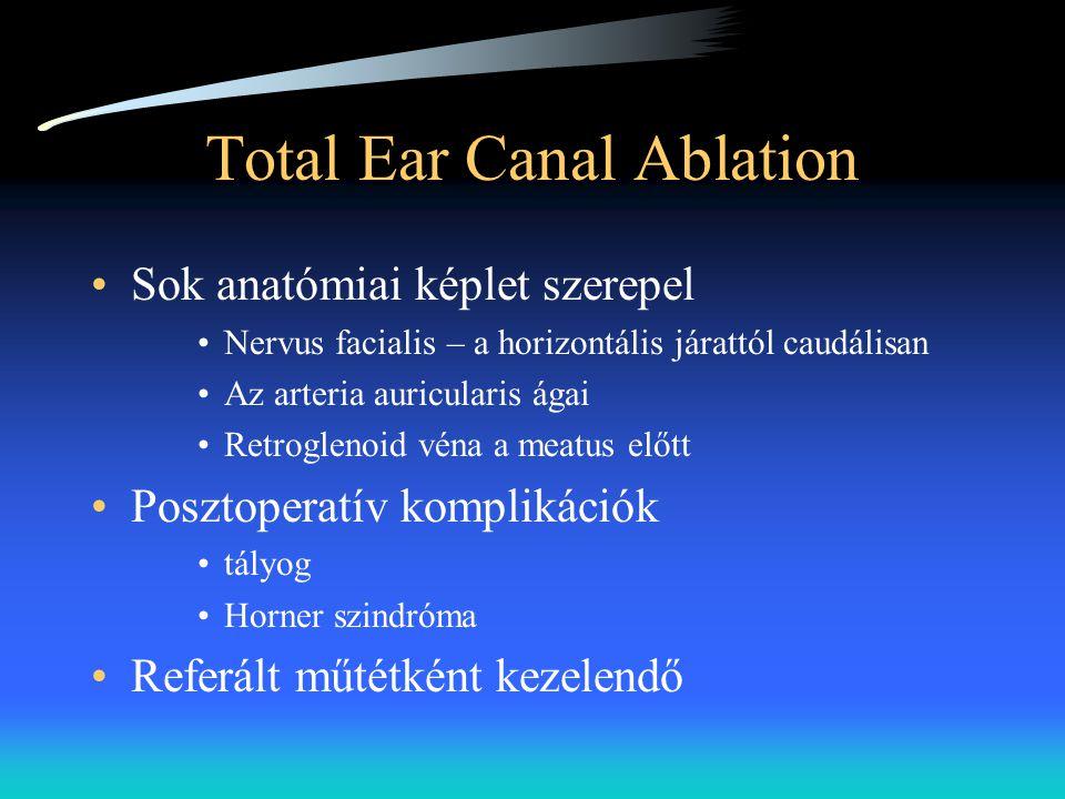 Total Ear Canal Ablation •Sok anatómiai képlet szerepel •Nervus facialis – a horizontális járattól caudálisan •Az arteria auricularis ágai •Retrogleno