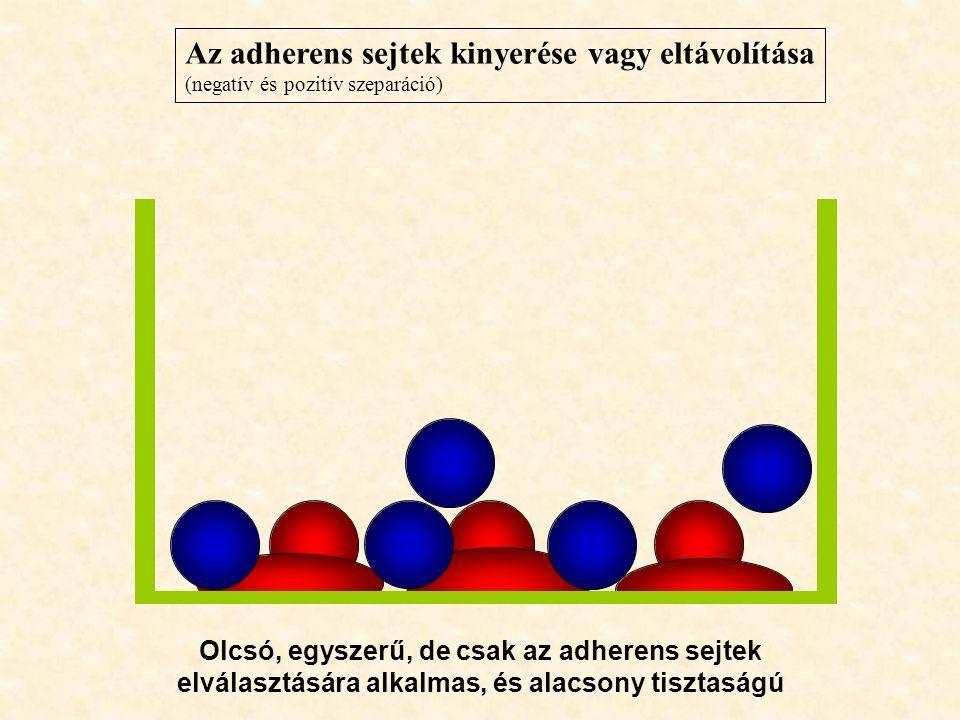 Az adherens sejtek kinyerése vagy eltávolítása (negatív és pozitív szeparáció) Olcsó, egyszerű, de csak az adherens sejtek elválasztására alkalmas, és