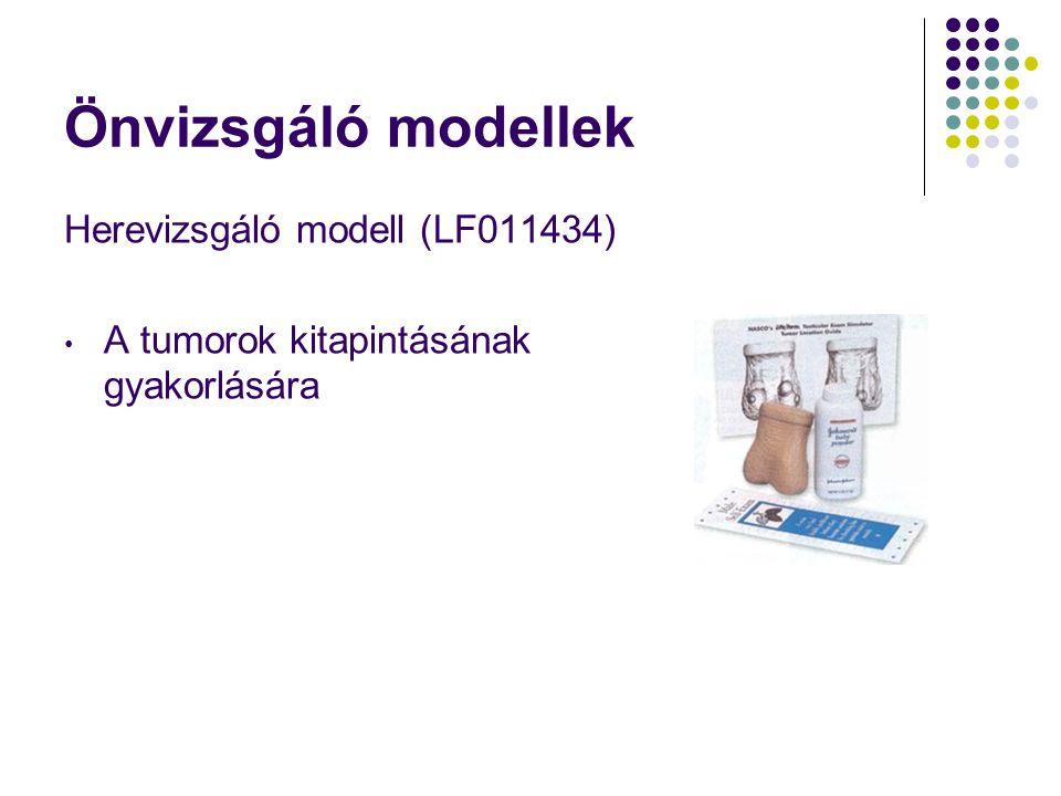 Önvizsgáló modellek Herevizsgáló modell (LF011434) • A tumorok kitapintásának gyakorlására