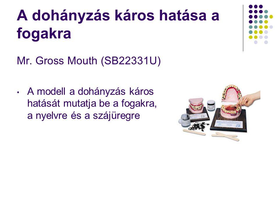 A dohányzás káros hatása a fogakra Mr. Gross Mouth (SB22331U) • A modell a dohányzás káros hatását mutatja be a fogakra, a nyelvre és a szájüregre