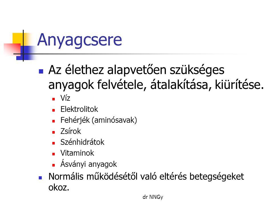 Anyagcsere  Veleszületett anyagcserezavarok Pl.fenilketonuria, galactosaemia, stb.