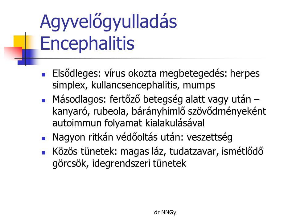 Agyvelőgyulladás Encephalitis  Elsődleges: vírus okozta megbetegedés: herpes simplex, kullancsencephalitis, mumps  Másodlagos: fertőző betegség alatt vagy után – kanyaró, rubeola, bárányhimlő szövődményeként autoimmun folyamat kialakulásával  Nagyon ritkán védőoltás után: veszettség  Közös tünetek: magas láz, tudatzavar, ismétlődő görcsök, idegrendszeri tünetek dr NNGy