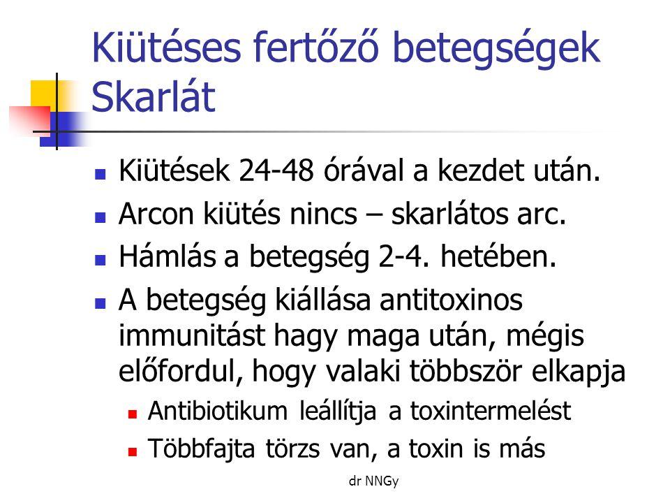 Kiütéses fertőző betegségek Skarlát  Kiütések 24-48 órával a kezdet után.  Arcon kiütés nincs – skarlátos arc.  Hámlás a betegség 2-4. hetében.  A