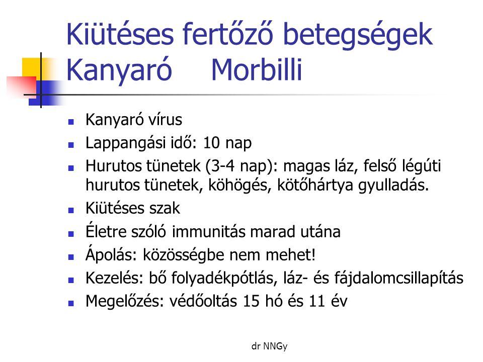 Kiütéses fertőző betegségek KanyaróMorbilli  Kanyaró vírus  Lappangási idő: 10 nap  Hurutos tünetek (3-4 nap): magas láz, felső légúti hurutos tüne