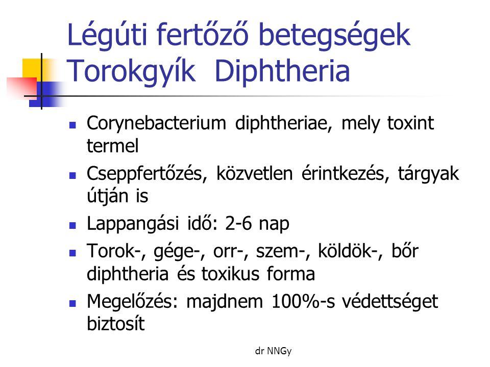 Légúti fertőző betegségek Torokgyík Diphtheria  Corynebacterium diphtheriae, mely toxint termel  Cseppfertőzés, közvetlen érintkezés, tárgyak útján is  Lappangási idő: 2-6 nap  Torok-, gége-, orr-, szem-, köldök-, bőr diphtheria és toxikus forma  Megelőzés: majdnem 100%-s védettséget biztosít dr NNGy
