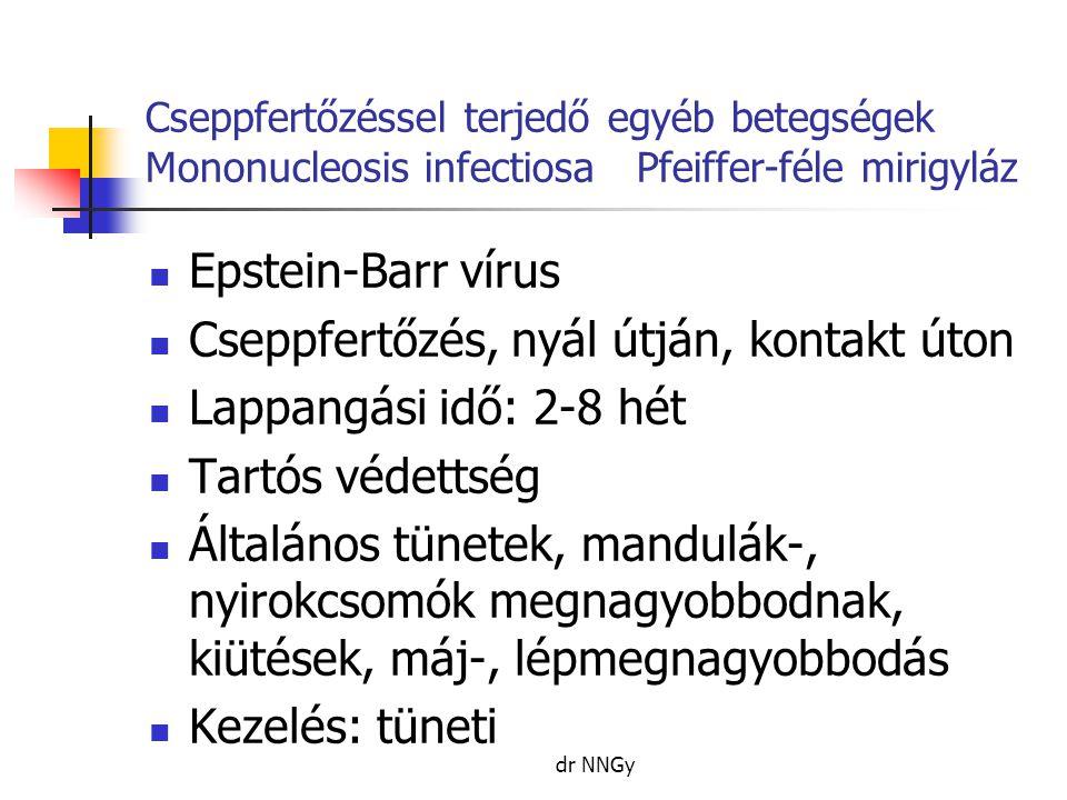 Cseppfertőzéssel terjedő egyéb betegségek Mononucleosis infectiosa Pfeiffer-féle mirigyláz  Epstein-Barr vírus  Cseppfertőzés, nyál útján, kontakt úton  Lappangási idő: 2-8 hét  Tartós védettség  Általános tünetek, mandulák-, nyirokcsomók megnagyobbodnak, kiütések, máj-, lépmegnagyobbodás  Kezelés: tüneti dr NNGy