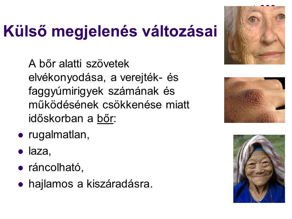 Testi változások Az időskorban bekövetkező testi változások hatással vannak:  az idős ember külső megjelenésére (bőr, haj, szőrzet, testtartás, járás),  az érzékszervek állapotára (látás, hallás, szaglás, ízlelés),  a belső szervek működésére (szívműködés, légzés, emésztés, kiválasztás, mozgás).