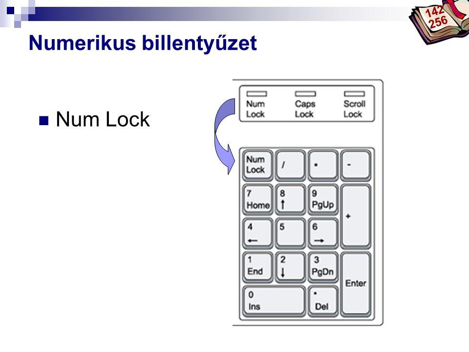 Bóta Laca Numerikus billentyűzet  Num Lock 142 256