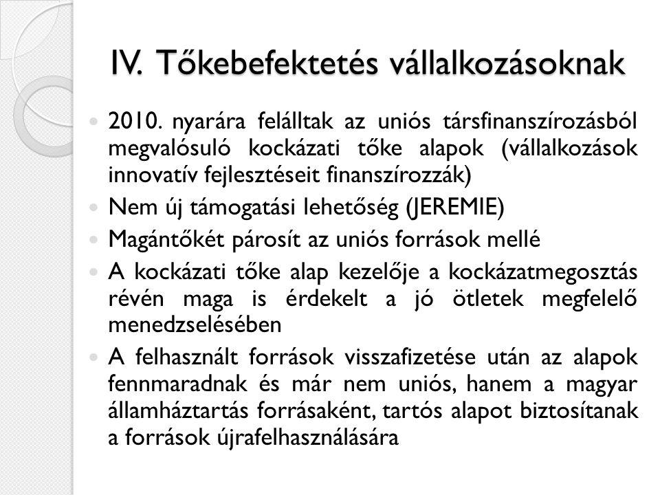 IV. Tőkebefektetés vállalkozásoknak  2010.