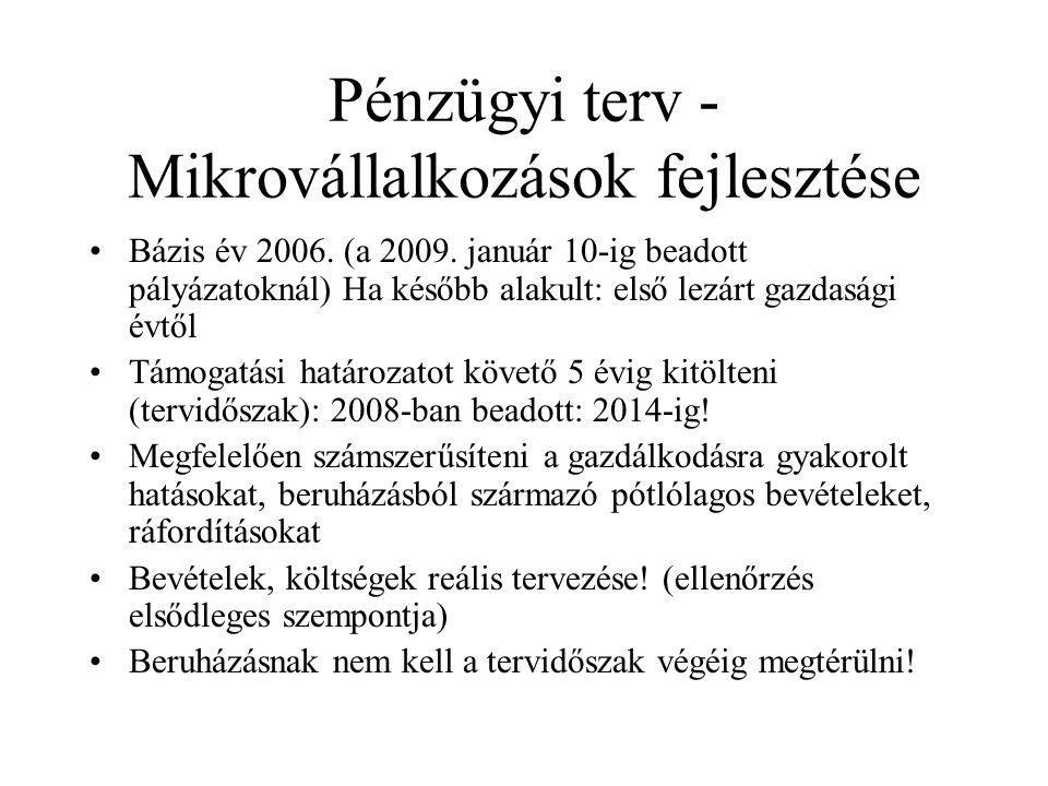 Pénzügyi terv - Mikrovállalkozások fejlesztése •Bázis év 2006.