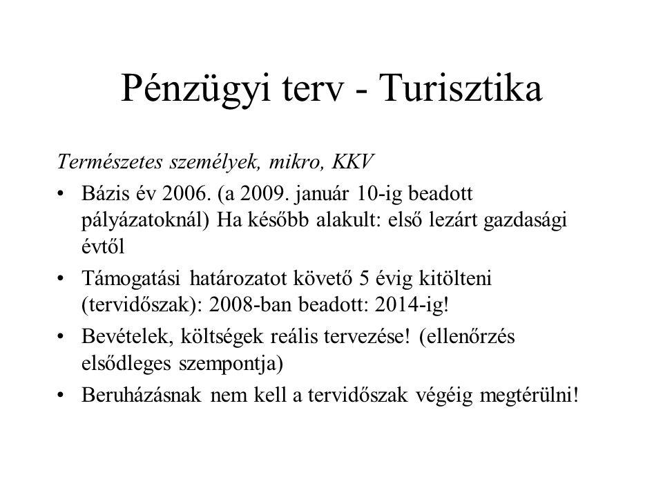 Pénzügyi terv - Turisztika Természetes személyek, mikro, KKV •Bázis év 2006.