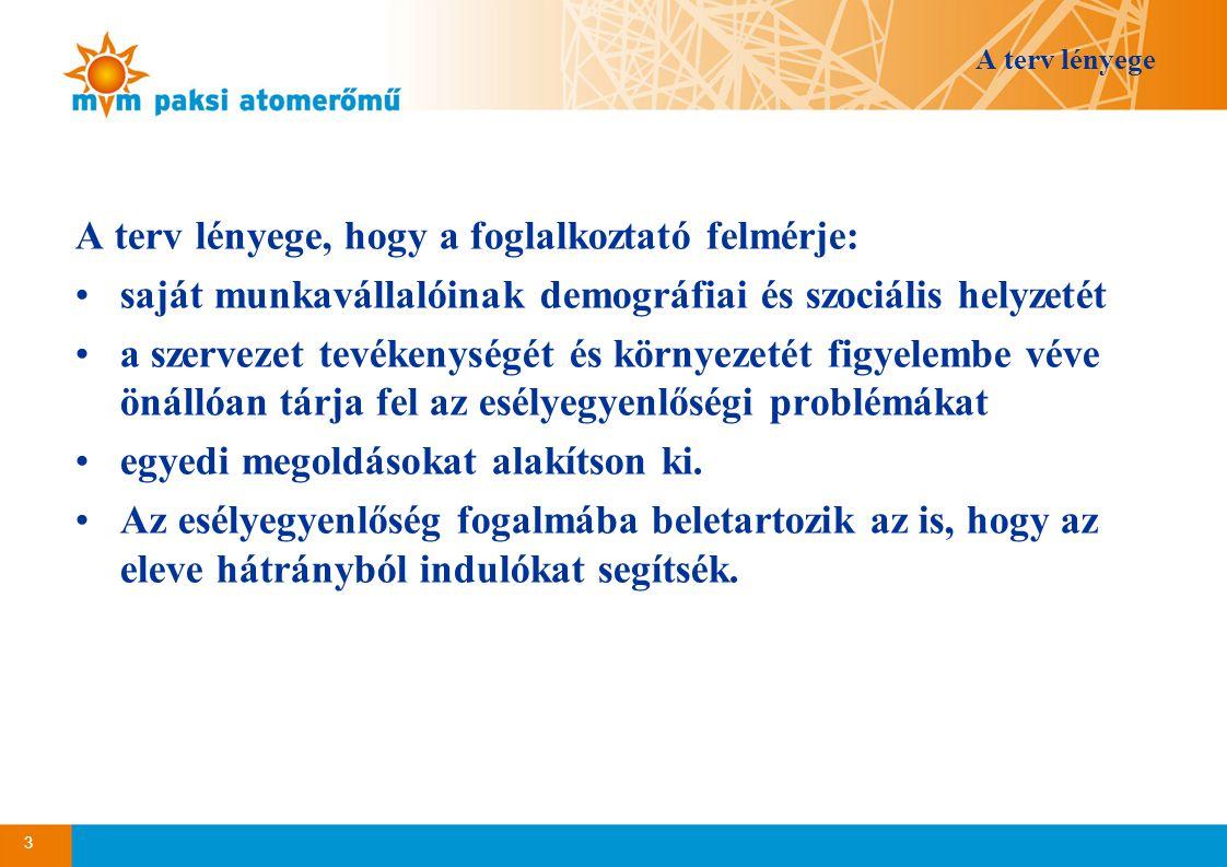 A terv lényege A terv lényege, hogy a foglalkoztató felmérje: •saját munkavállalóinak demográfiai és szociális helyzetét •a szervezet tevékenységét és környezetét figyelembe véve önállóan tárja fel az esélyegyenlőségi problémákat •egyedi megoldásokat alakítson ki.