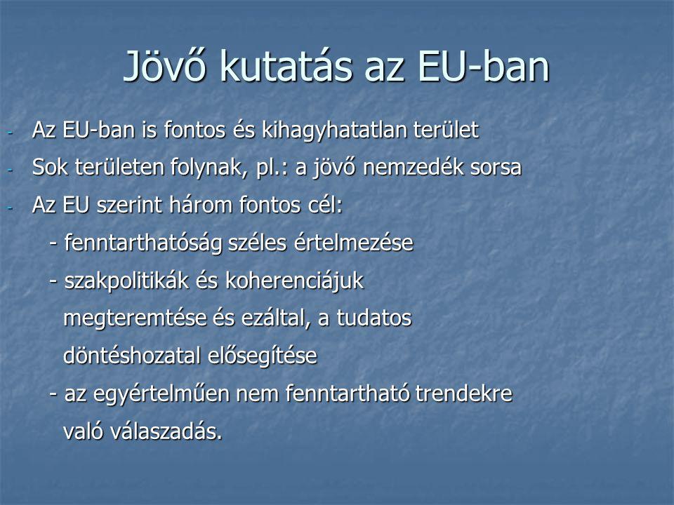 """EU gazdasági kutatás   A """"Liszaboni célok eléréséhez közös kutatás kell."""