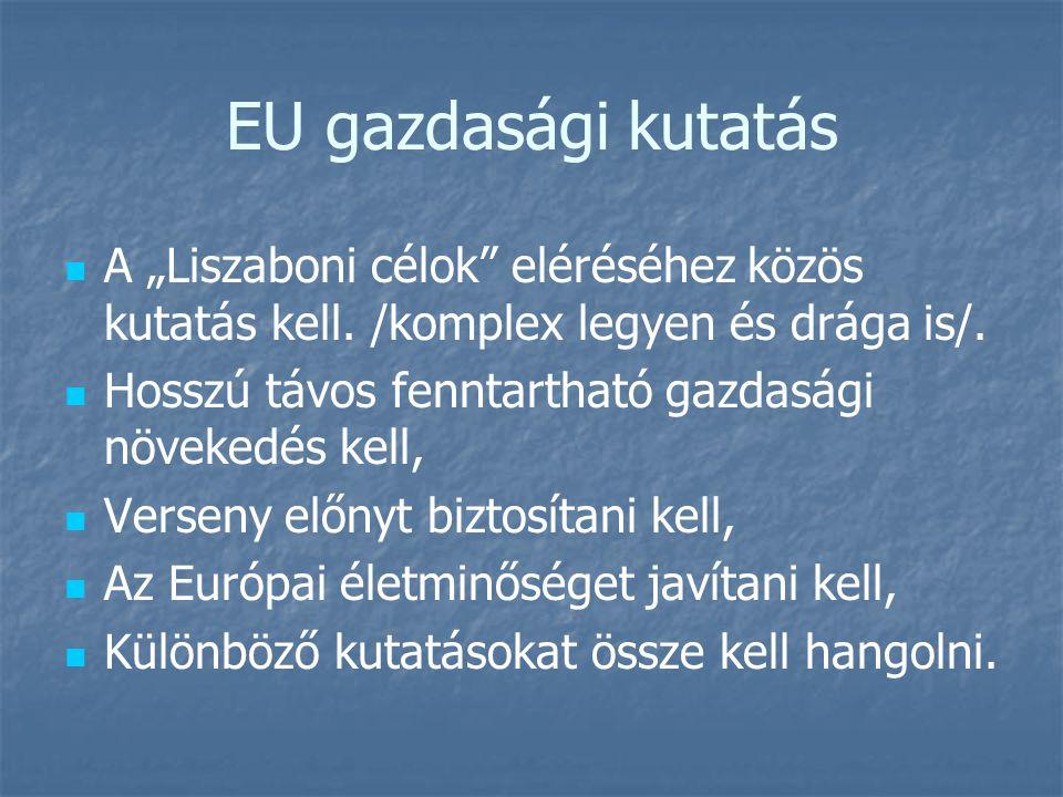 """EU gazdasági kutatás   A """"Liszaboni célok"""" eléréséhez közös kutatás kell. /komplex legyen és drága is/.   Hosszú távos fenntartható gazdasági növe"""