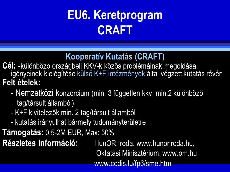 EU6. Keretprogram CRAFT Kooperatív Kutatás (CRAFT) Cél: - különböző országbeli KKV-k közös problémáinak megoldása, igényeinek kielégítése külső K+F in
