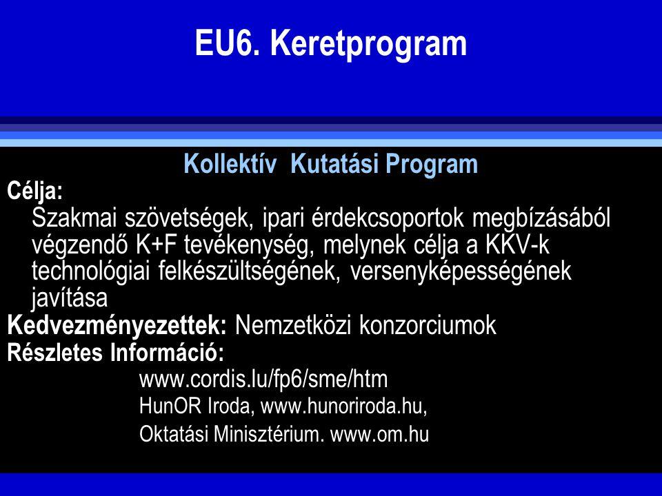 EU6. Keretprogram Kollektív Kutatási Program Célja: Szakmai szövetségek, ipari érdekcsoportok megbízásából végzendő K+F tevékenység, melynek célja a K