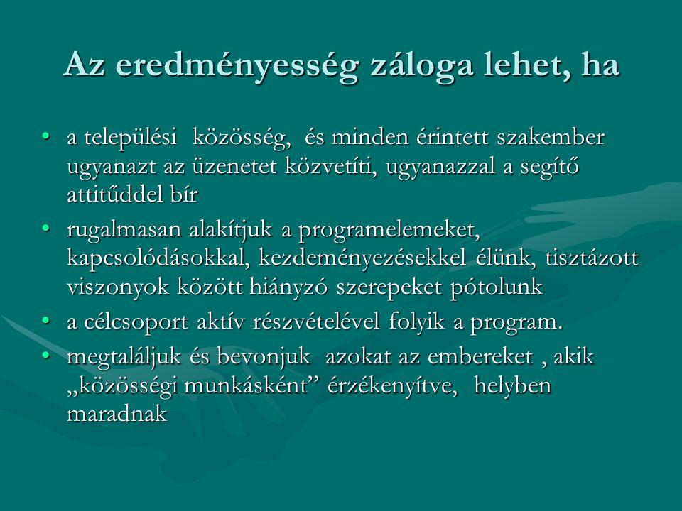 Helyi partnerség Helyi partnerség Akikre számíthattunk, akikre számítunk: - szakmai intézmények és szervezetek - települési szociális, foglalkoztatási, karitatív segítők, helyben élő szakemberek segítők, helyben élő szakemberek -civil szervezetek -helyi segítők