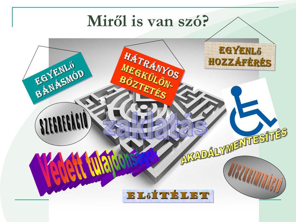 2014.07. 05. Az egyenlő bánásmód, esélyegyenlőség Plakát: Balázs Anna •2003.