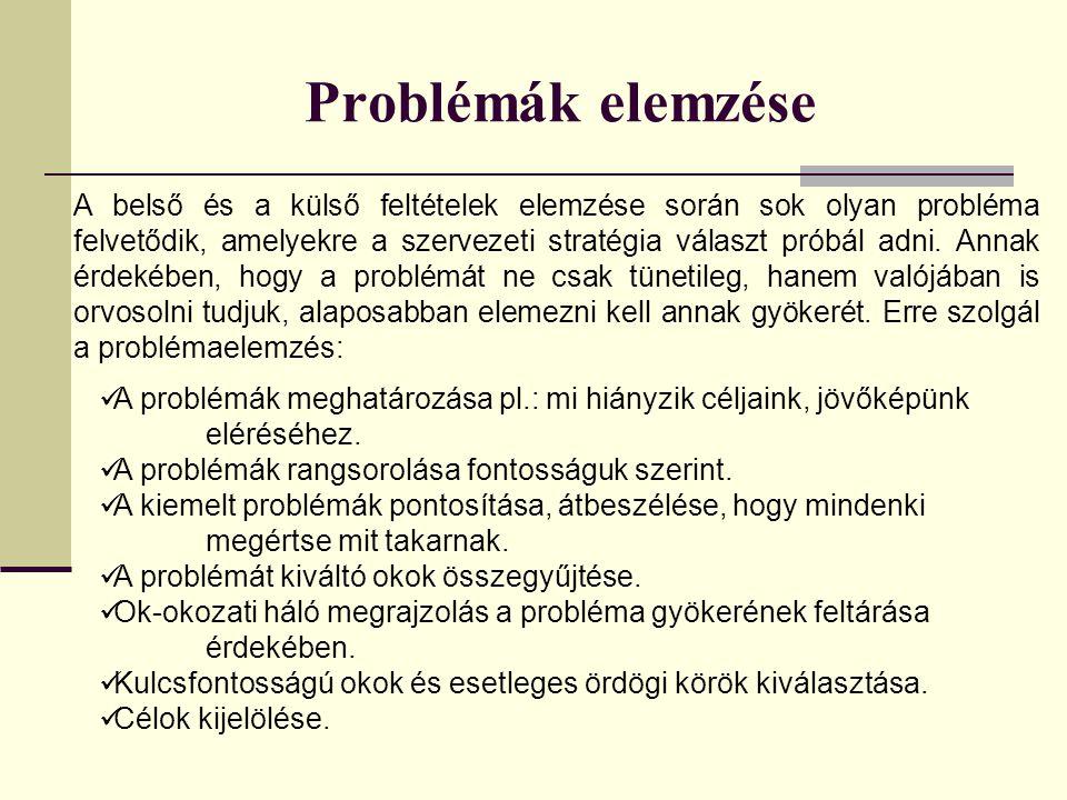 Problémák elemzése A belső és a külső feltételek elemzése során sok olyan probléma felvetődik, amelyekre a szervezeti stratégia választ próbál adni.
