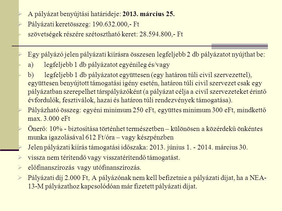  A pályázat benyújtási határideje: 2013.március 25.