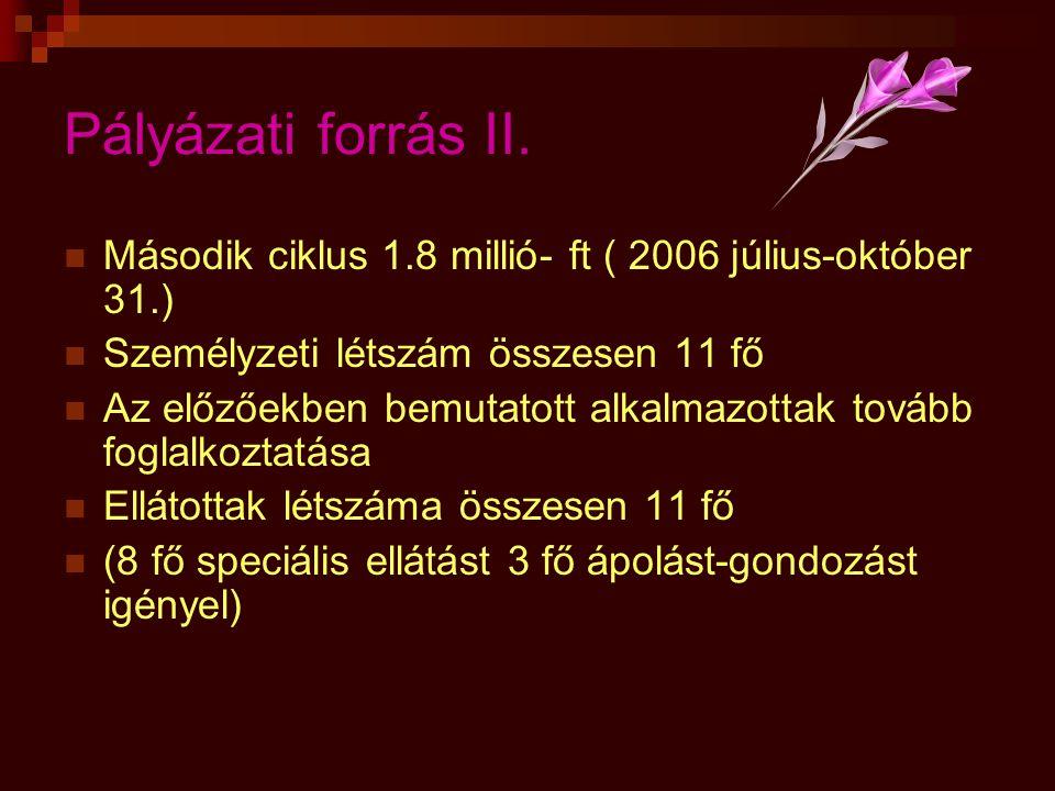 Pályázati forrás II.  Második ciklus 1.8 millió- ft ( 2006 július-október 31.)  Személyzeti létszám összesen 11 fő  Az előzőekben bemutatott alkalm