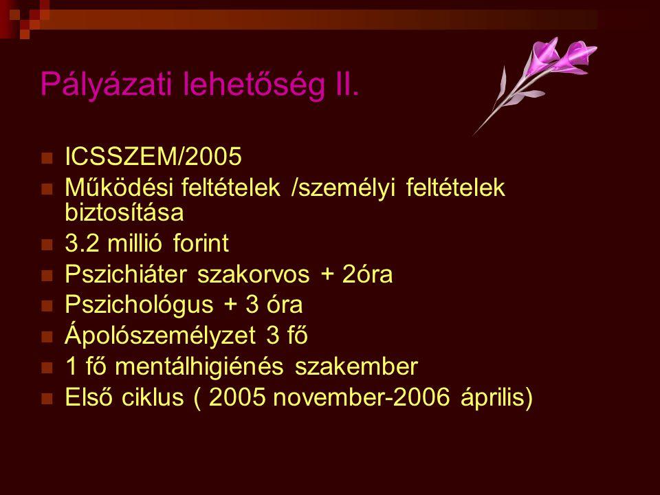 Pályázati lehetőség II.  ICSSZEM/2005  Működési feltételek /személyi feltételek biztosítása  3.2 millió forint  Pszichiáter szakorvos + 2óra  Psz