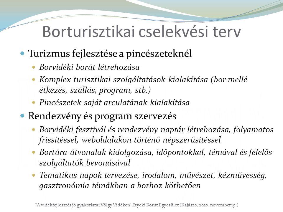 Borturisztikai cselekvési terv  Turizmus fejlesztése a pincészeteknél  Borvidéki borút létrehozása  Komplex turisztikai szolgáltatások kialakítása