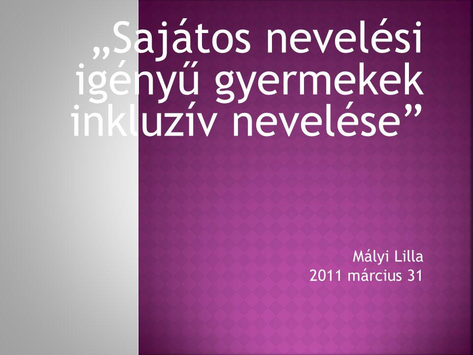 """""""Sajátos nevelési igényű gyermekek inkluzív nevelése Mályi Lilla 2011 március 31"""