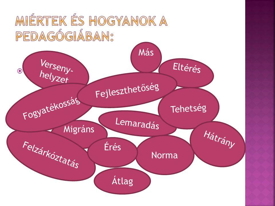  Más Eltérés Lemaradás Tehetség Migráns Norma Felzárkóztatás Hátrány Verseny- helyzet Fogyatékosság Érés Fejleszthetőség Átlag