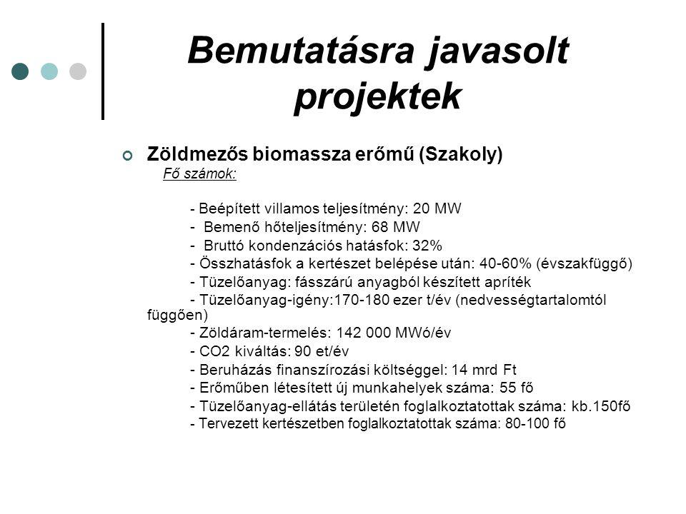 Bemutatásra javasolt projektek Zöldmezős biomassza erőmű (Szakoly) Fő számok: - Beépített villamos teljesítmény: 20 MW - Bemenő hőteljesítmény: 68 MW - Bruttó kondenzációs hatásfok: 32% - Összhatásfok a kertészet belépése után: 40-60% (évszakfüggő) - Tüzelőanyag: fásszárú anyagból készített apríték - Tüzelőanyag-igény:170-180 ezer t/év (nedvességtartalomtól függően) - Zöldáram-termelés: 142 000 MWó/év - CO2 kiváltás: 90 et/év - Beruházás finanszírozási költséggel: 14 mrd Ft - Erőműben létesített új munkahelyek száma: 55 fő - Tüzelőanyag-ellátás területén foglalkoztatottak száma: kb.150fő - Tervezett kertészetben foglalkoztatottak száma: 80-100 fő