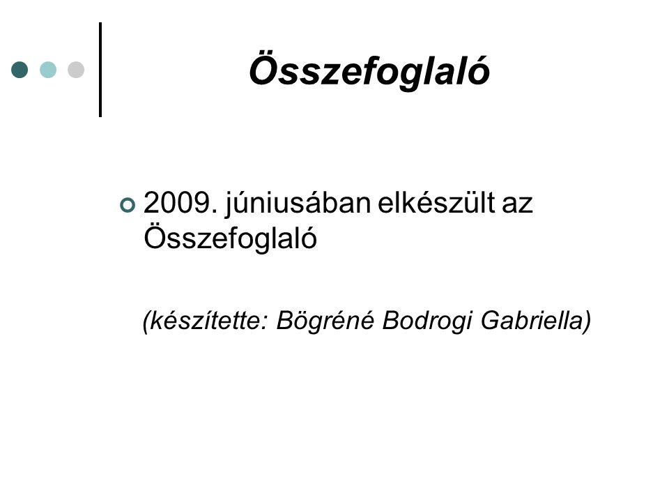 Programiroda Gőgös Zoltán államtitkár úr elfogadta a koncepciót, tárca 2009.