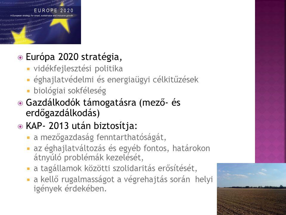  Európa 2020 stratégia,  vidékfejlesztési politika  éghajlatvédelmi és energiaügyi célkitűzések  biológiai sokféleség  Gazdálkodók támogatásra (mező- és erdőgazdálkodás)  KAP- 2013 után biztosítja:  a mezőgazdaság fenntarthatóságát,  az éghajlatváltozás és egyéb fontos, határokon átnyúló problémák kezelését,  a tagállamok közötti szolidaritás erősítését,  a kellő rugalmasságot a végrehajtás során helyi igények érdekében.