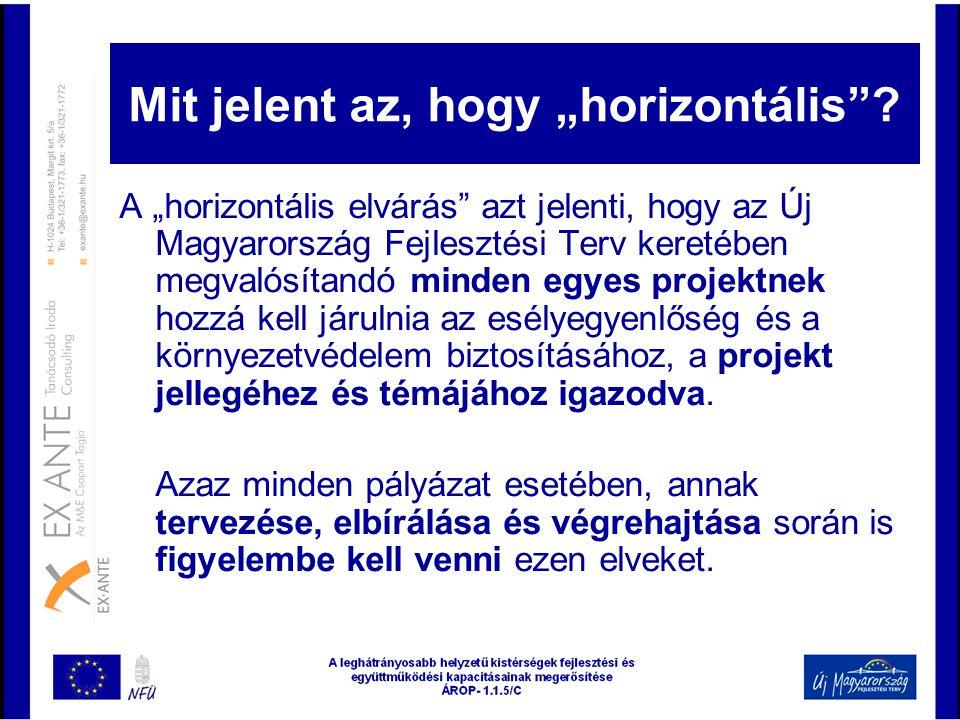 """Mit jelent az, hogy """"horizontális""""? A """"horizontális elvárás"""" azt jelenti, hogy az Új Magyarország Fejlesztési Terv keretében megvalósítandó minden egy"""